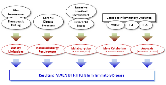 """malnutrition disease process For the purpose of this article, disease-related malnutrition is defined as """"undernutrition as a result of a disease process,"""" which may be present on admission."""